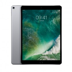 "iPad Pro 10,5"" 64 Go Wifi + 4G (2017) Gris Sidéral"